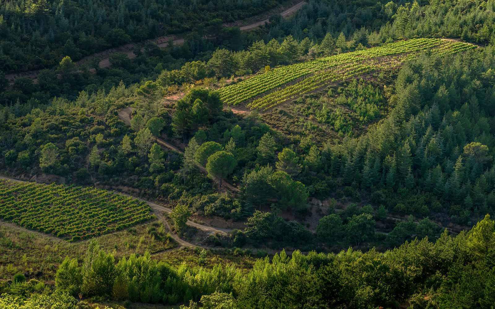 How environmentally friendly is Le Grand Noir?